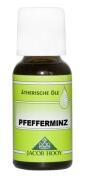 Aromaöl Pfefferminz (20 ml)