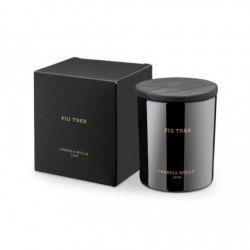Duftkerze Feigenbaum (250 g)